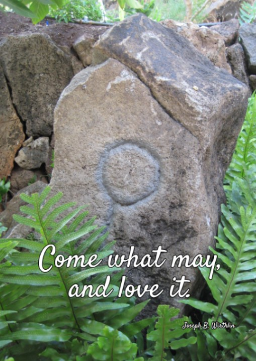Come what may and love it WCCHC pohaku