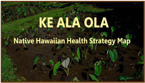 ke ala ola  u2013 native hawaiian health resource map